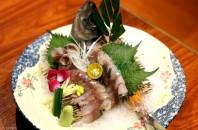 繁華なCBDに静けさを得られる庭園風日本料理店「和楽」