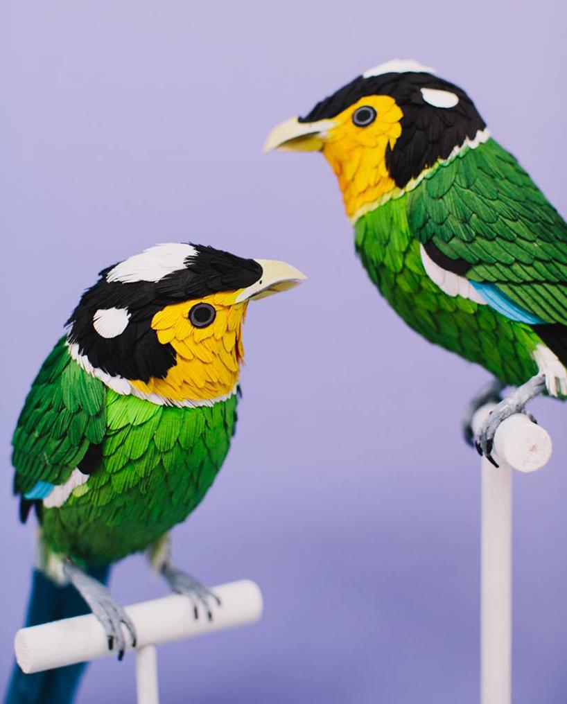 diana-beltran-herrera-paper-aviary-birds-designboom-04