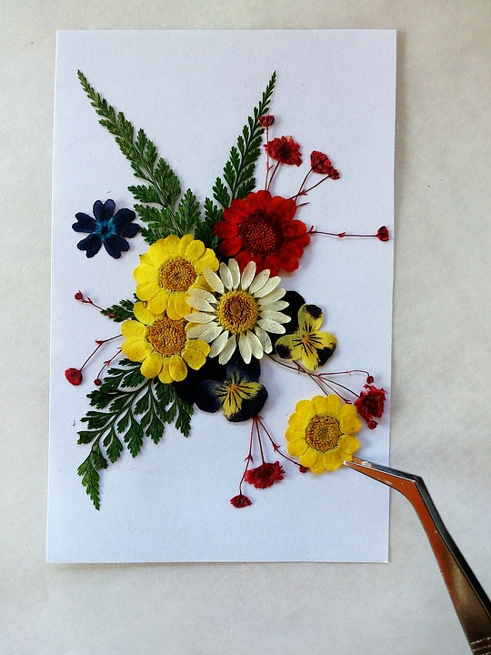 pressed-flowers-1721750_960_720