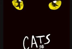 傑作ミュージカル「CATS」深圳