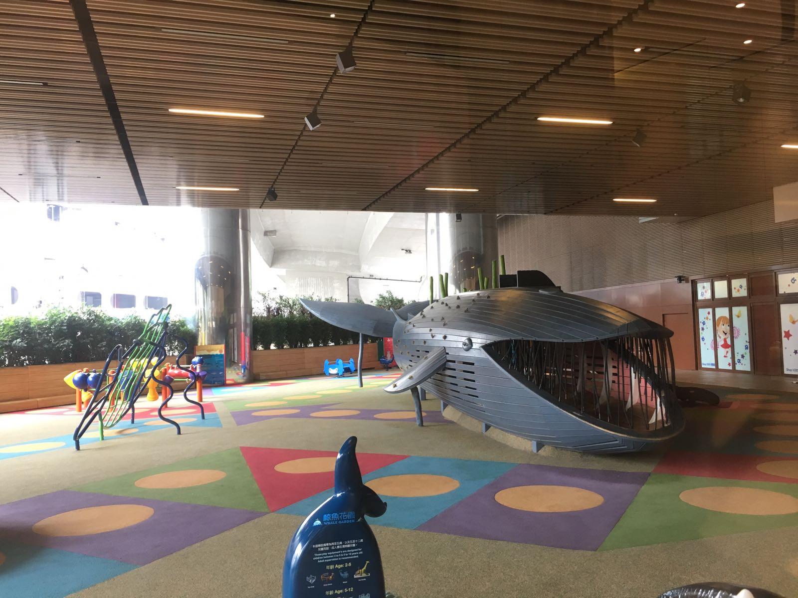 鯨魚花園1