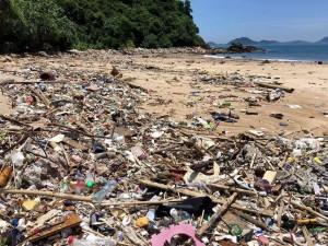 もしあのとき大浪湾のビーチにここまでゴミがなかったら、「The First Penguins」を立ち上げていなかったかもしれません
