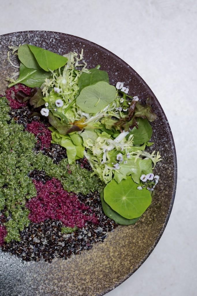 カラフルな色合いが美しい「Quinoa Salad」
