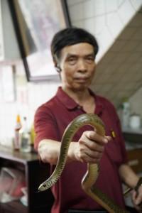 2. 蛇王林01