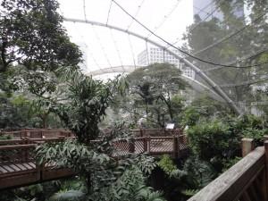 尤徳観鳥園
