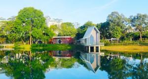 香蜜公园11