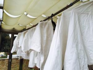 柔道着 洗濯2