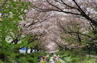 故郷自慢 Vol.10 【神奈川県横浜市】