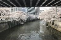 故郷自慢 Vol.9 【東京都品川区】