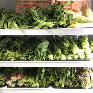 野菜も種類豊富