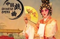 カバーストーリー 2020年8月第3週号「中国戯曲」