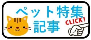 香港ペット特集記事