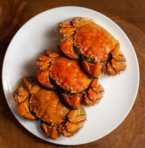 Hairy Crab 1